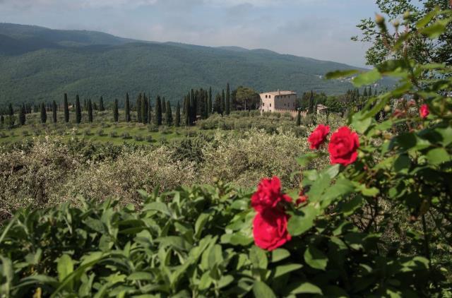 Le Case Di Dorrie For Sale Near Perugia Prestigious